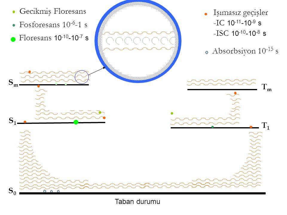 Gecikmiş Floresans Işımasız geçişler -IC 10-11-10-9 s