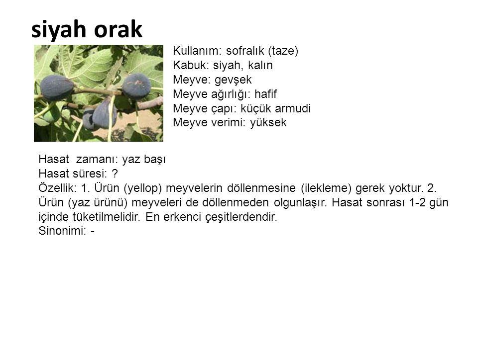siyah orak Kullanım: sofralık (taze) Kabuk: siyah, kalın Meyve: gevşek
