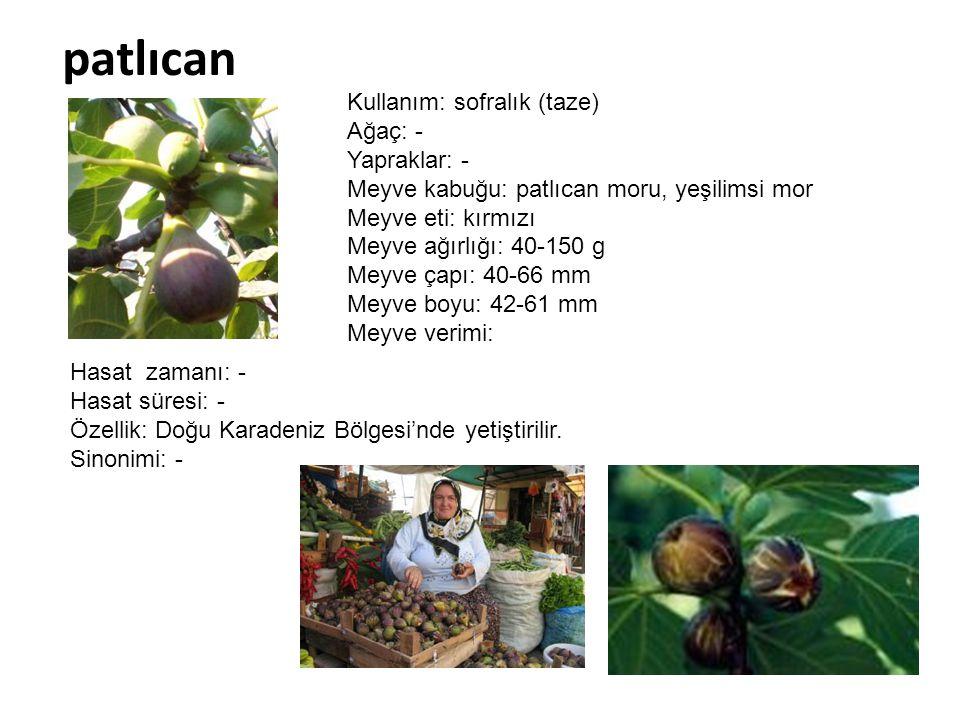 patlıcan Kullanım: sofralık (taze) Ağaç: - Yapraklar: -