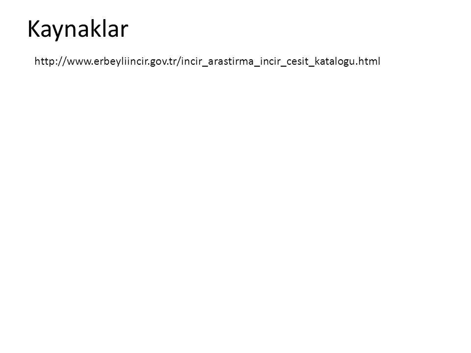 Kaynaklar http://www.erbeyliincir.gov.tr/incir_arastirma_incir_cesit_katalogu.html