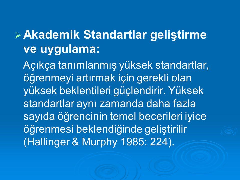 Akademik Standartlar geliştirme ve uygulama: