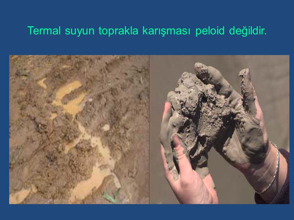 Termal suyun toprakla karışması peloid değildir.