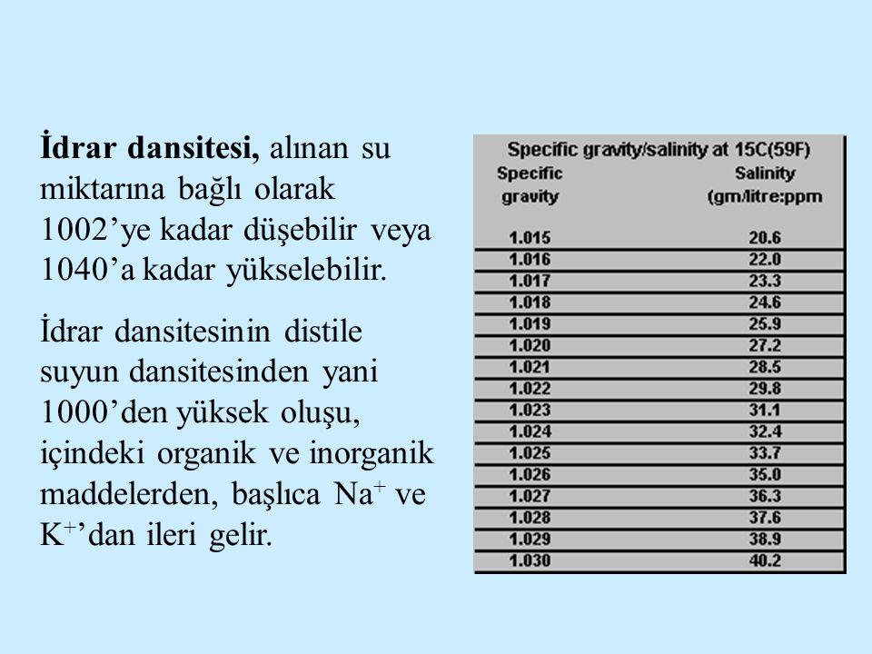 İdrar dansitesi, alınan su miktarına bağlı olarak 1002'ye kadar düşebilir veya 1040'a kadar yükselebilir.