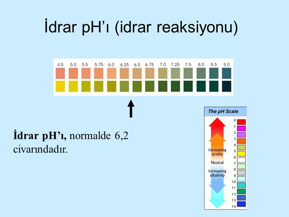 İdrar pH'ı (idrar reaksiyonu)