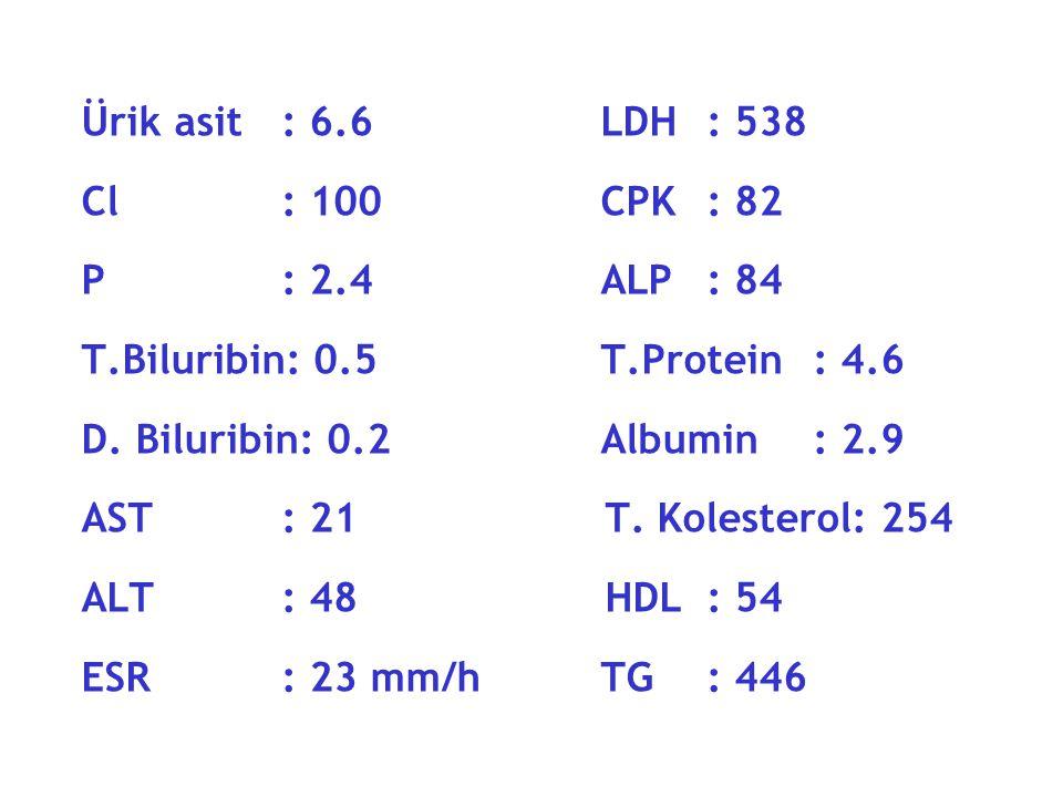 Ürik asit : 6.6 LDH : 538 Cl : 100 CPK : 82. P : 2.4 ALP : 84.
