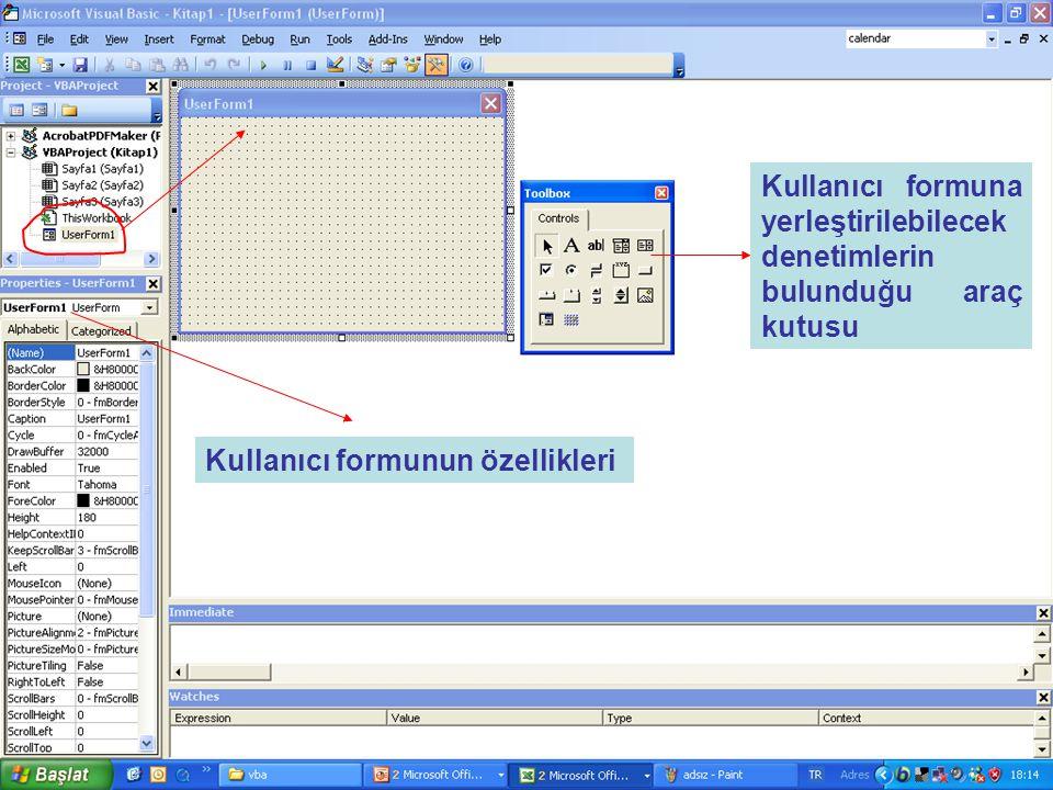 Kullanıcı formuna yerleştirilebilecek denetimlerin bulunduğu araç kutusu