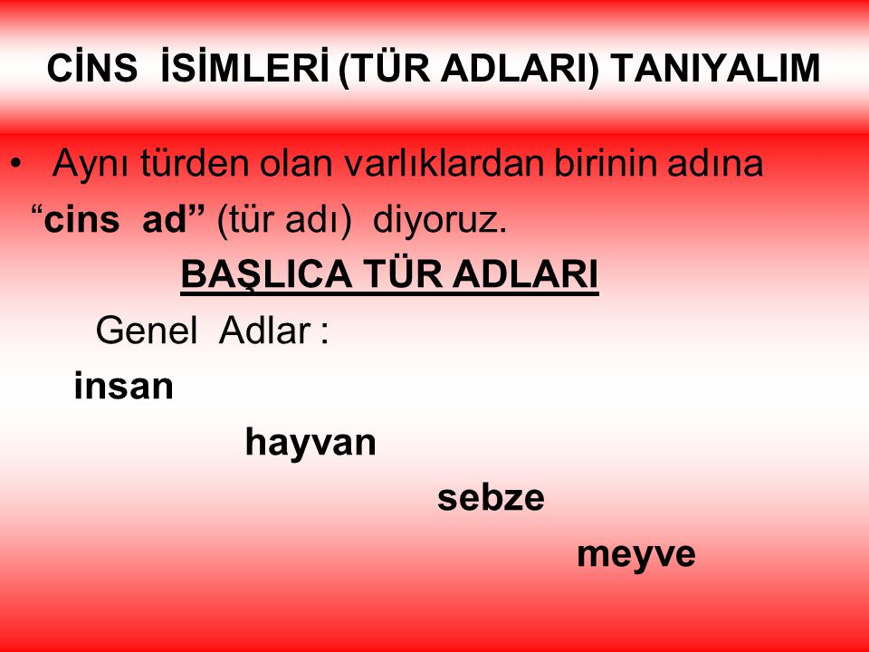 CİNS İSİMLERİ (TÜR ADLARI) TANIYALIM