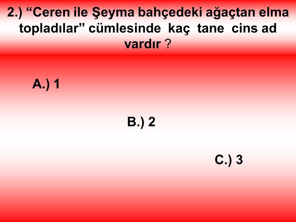 2.) Ceren ile Şeyma bahçedeki ağaçtan elma topladılar cümlesinde kaç tane cins ad vardır