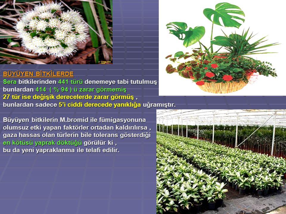 BÜYÜYEN BİTKİLERDE Sera bitkilerinden 441 türü denemeye tabi tutulmuş , bunlardan 414 ( % 94 ) ü zarar görmemiş.