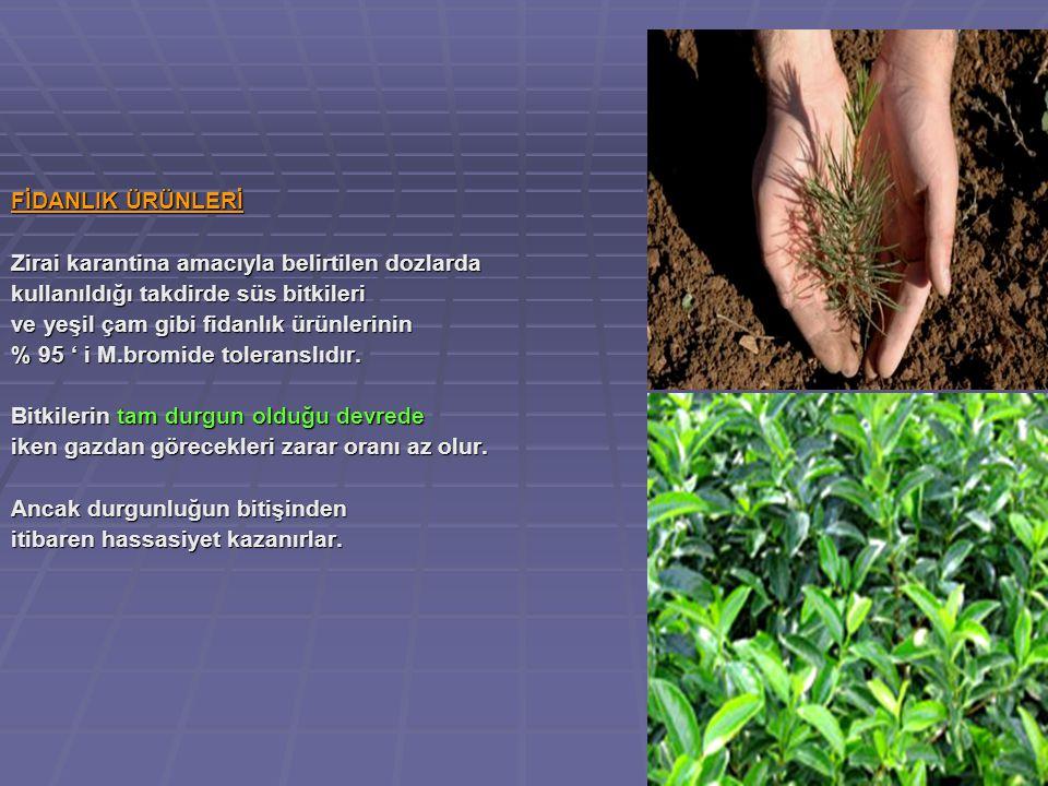 FİDANLIK ÜRÜNLERİ Zirai karantina amacıyla belirtilen dozlarda. kullanıldığı takdirde süs bitkileri.