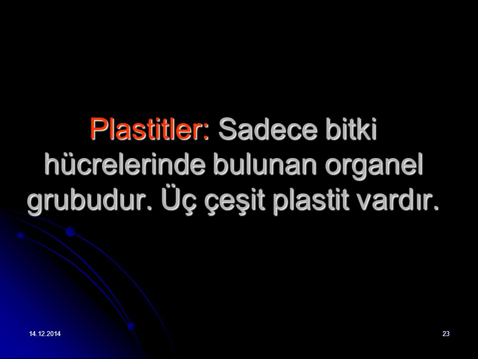 Plastitler: Sadece bitki hücrelerinde bulunan organel grubudur