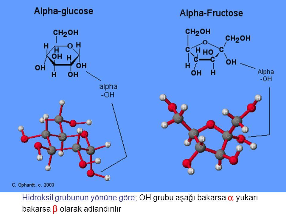 Hidroksil grubunun yönüne göre; OH grubu aşağı bakarsa a yukarı bakarsa b olarak adlandırılır