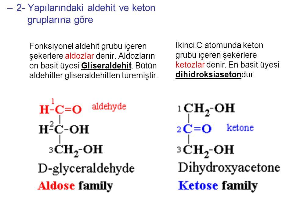 2- Yapılarındaki aldehit ve keton gruplarına göre
