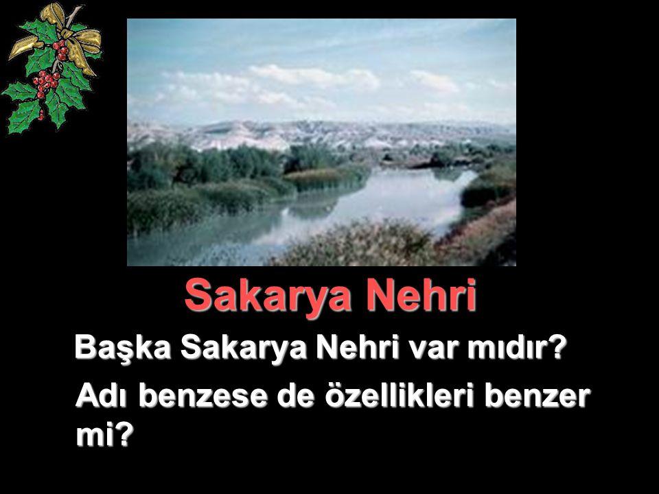 Başka Sakarya Nehri var mıdır