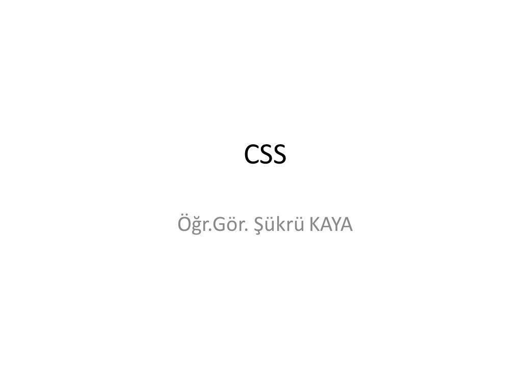 CSS Öğr.Gör. Şükrü KAYA
