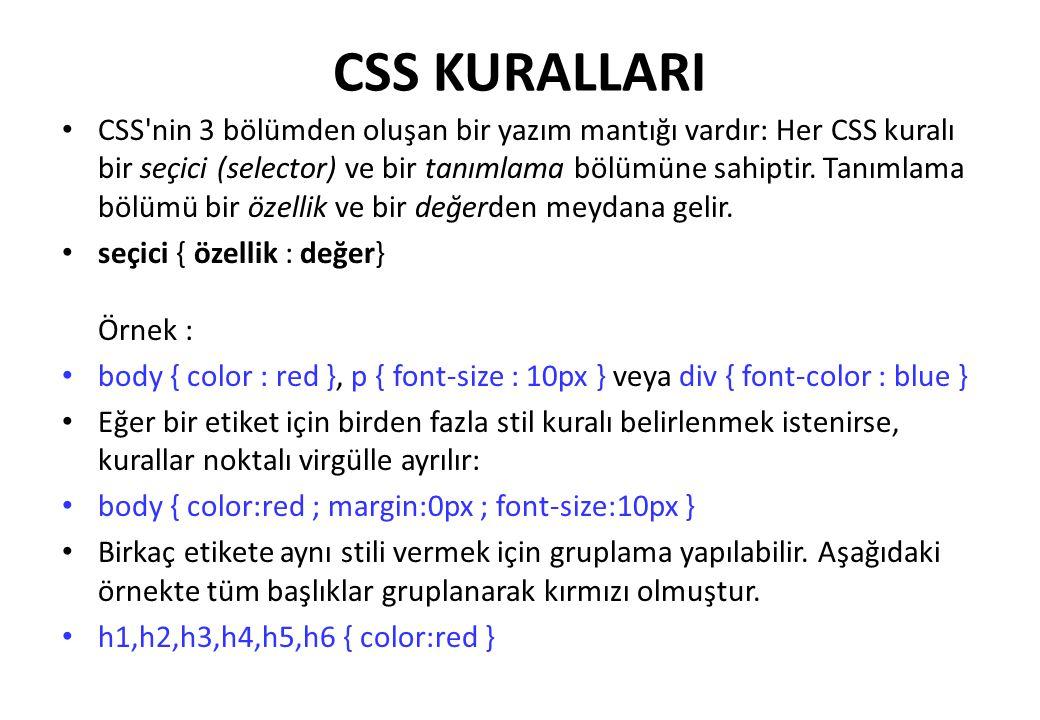 CSS KURALLARI