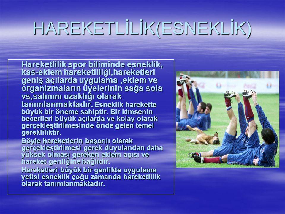 HAREKETLİLİK(ESNEKLİK)