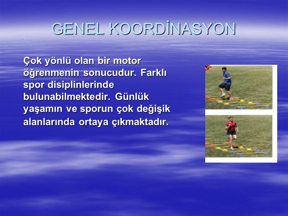 GENEL KOORDİNASYON