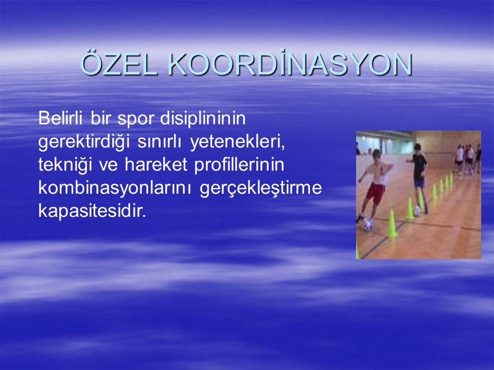 ÖZEL KOORDİNASYON
