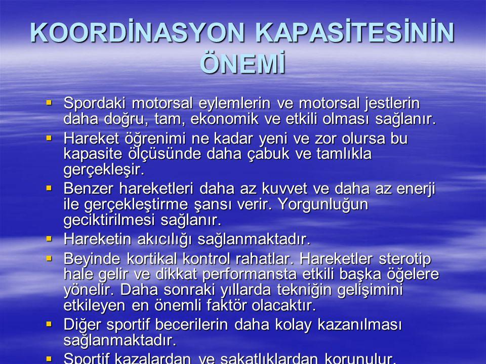 KOORDİNASYON KAPASİTESİNİN ÖNEMİ