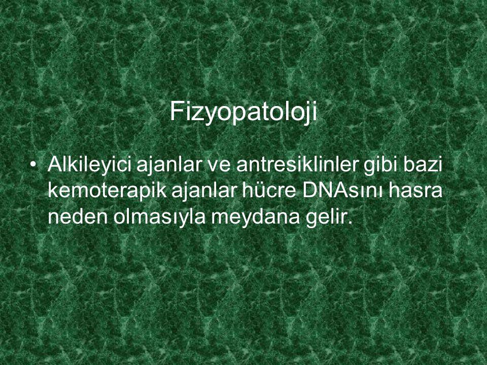 Fizyopatoloji Alkileyici ajanlar ve antresiklinler gibi bazi kemoterapik ajanlar hücre DNAsını hasra neden olmasıyla meydana gelir.