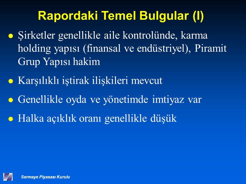 Rapordaki Temel Bulgular (II)