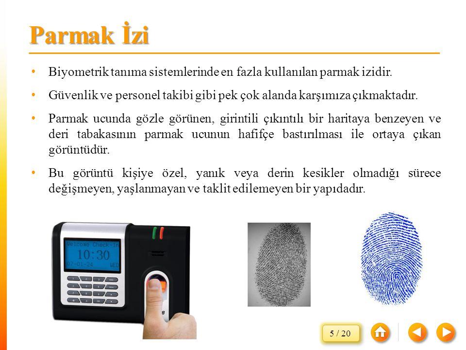 Parmak İzi Biyometrik tanıma sistemlerinde en fazla kullanılan parmak izidir. Güvenlik ve personel takibi gibi pek çok alanda karşımıza çıkmaktadır.