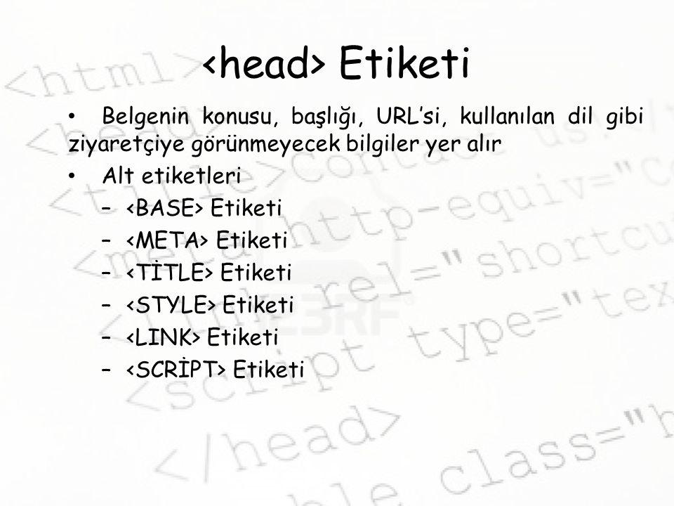 <head> Etiketi Belgenin konusu, başlığı, URL'si, kullanılan dil gibi ziyaretçiye görünmeyecek bilgiler yer alır.