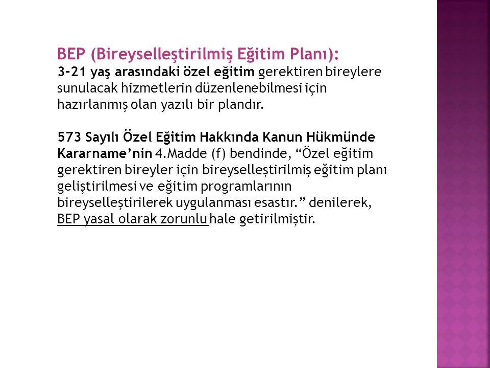 BEP (Bireyselleştirilmiş Eğitim Planı):