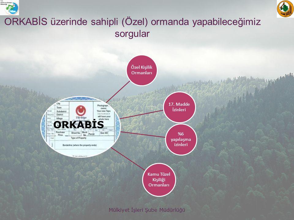 ORKABİS üzerinde sahipli (Özel) ormanda yapabileceğimiz sorgular