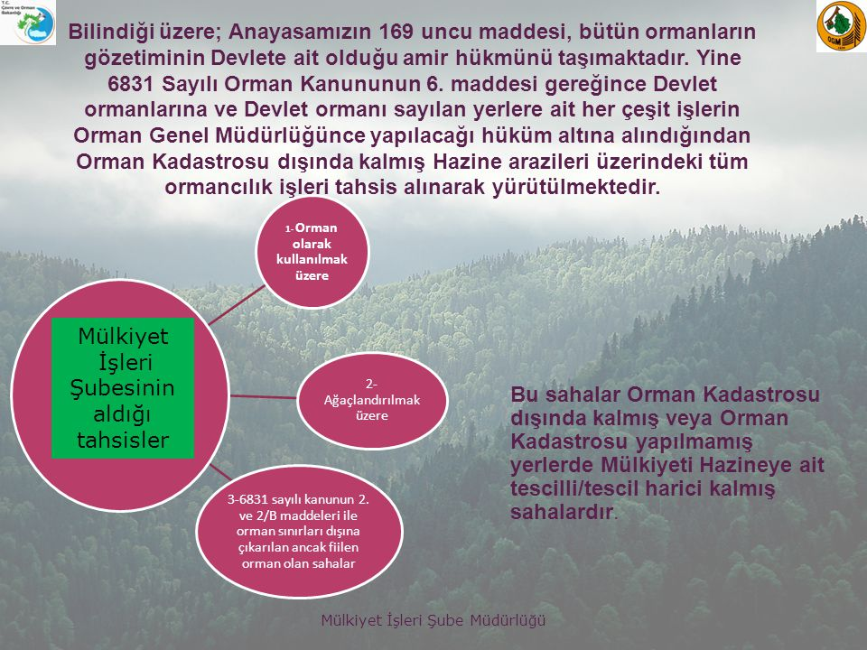 1- Orman olarak kullanılmak üzere