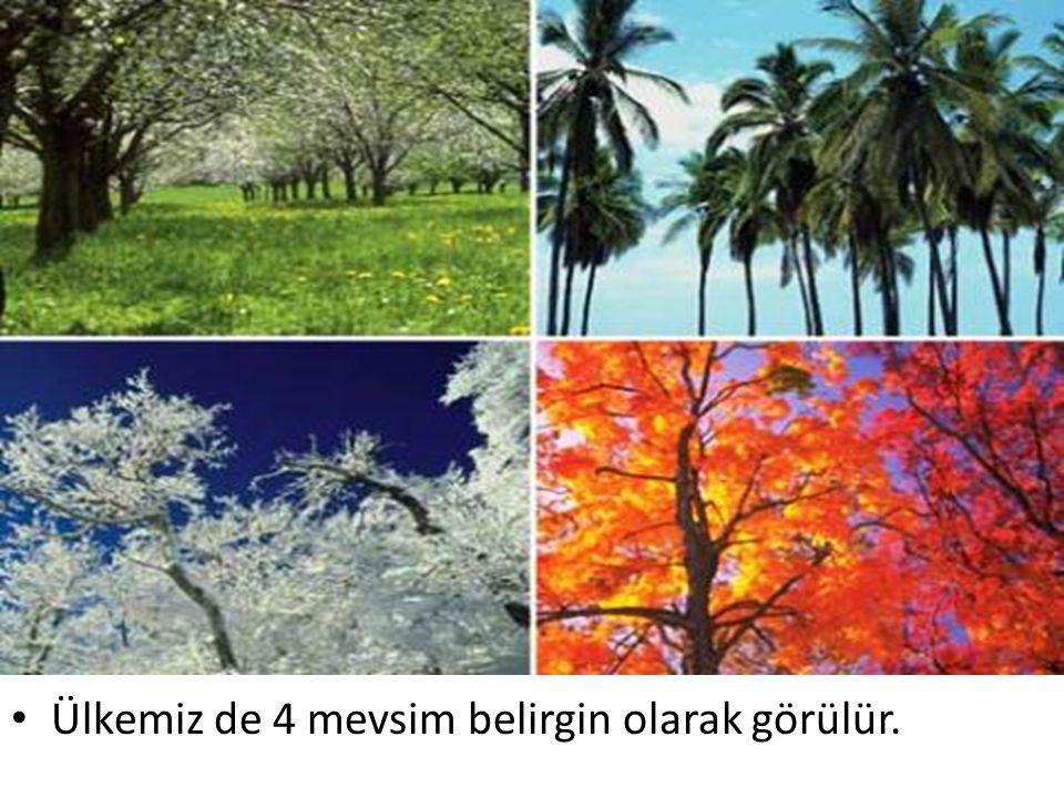 Ülkemiz de 4 mevsim belirgin olarak görülür.