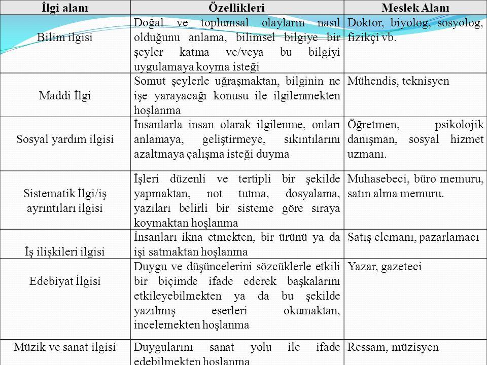Sistematik İlgi/iş ayrıntıları ilgisi