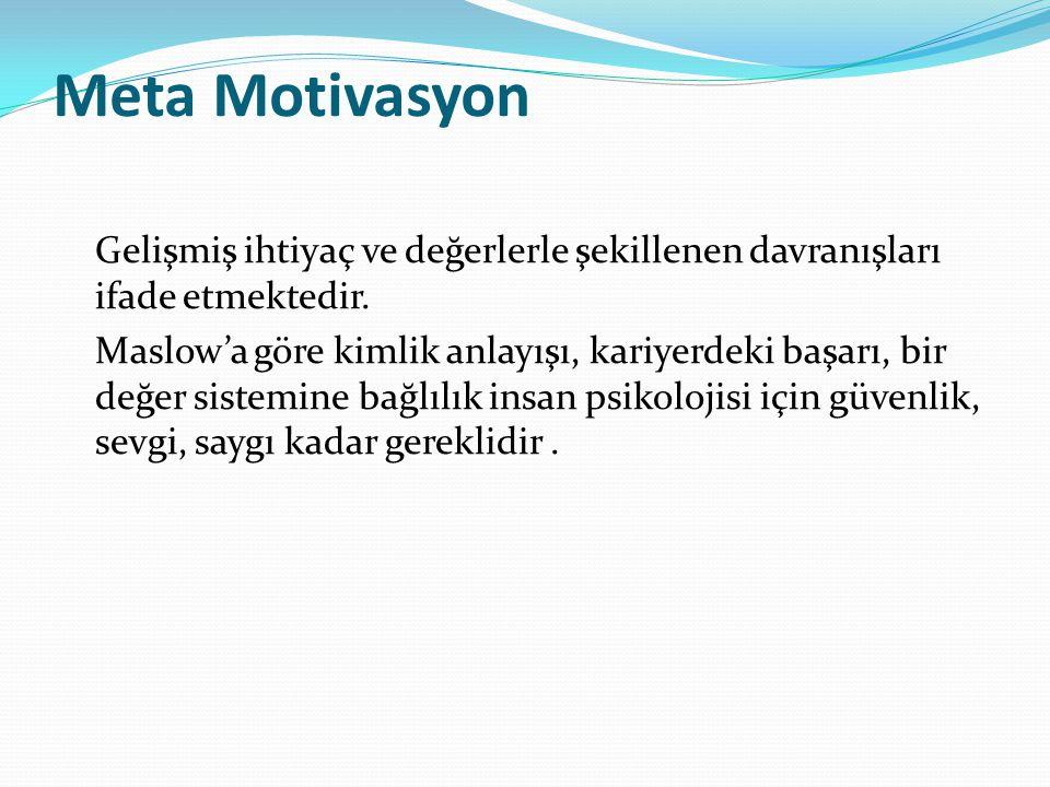 Meta Motivasyon