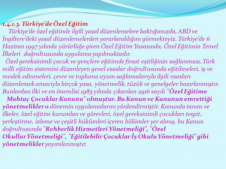 1.4.1.3. Türkiye'de Özel Eğitim