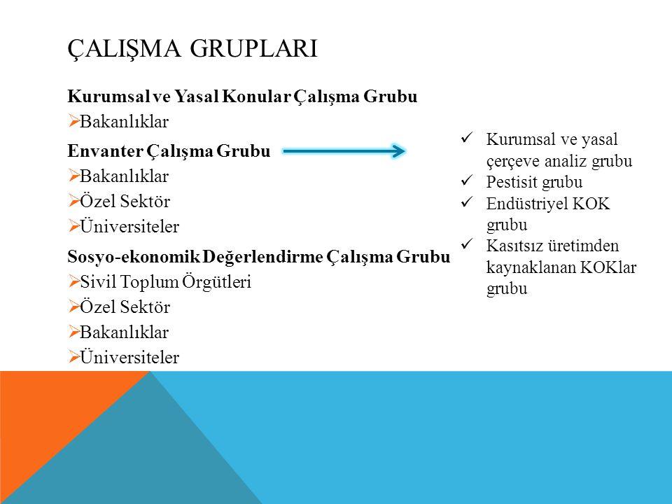 ÇalIşma GruplarI Kurumsal ve Yasal Konular Çalışma Grubu Bakanlıklar
