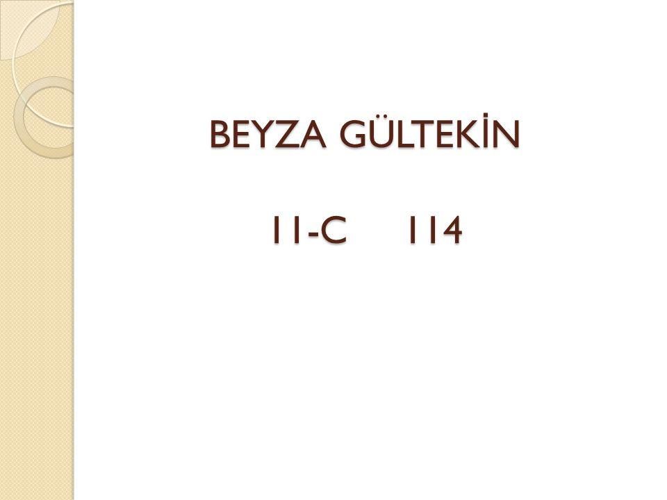 BEYZA GÜLTEKİN 11-C 114