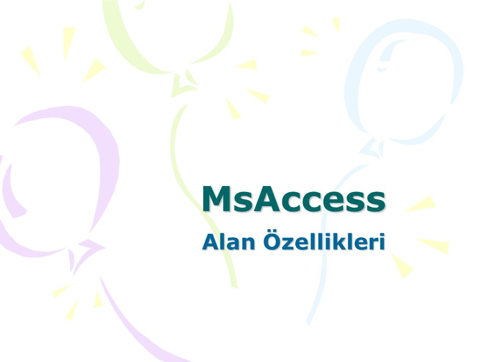MsAccess Alan Özellikleri