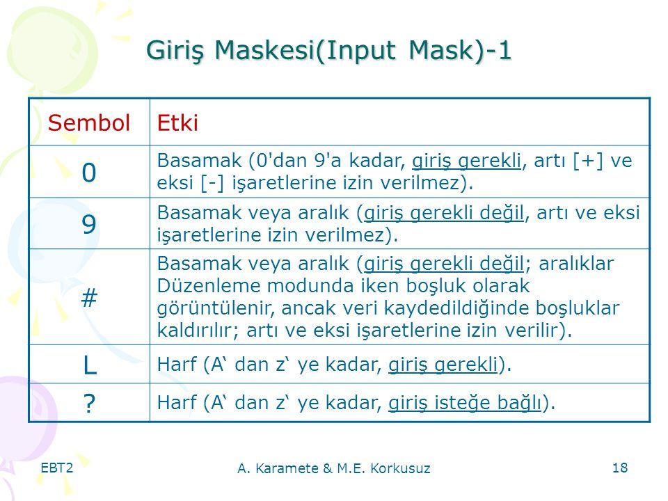 Giriş Maskesi(Input Mask)-1