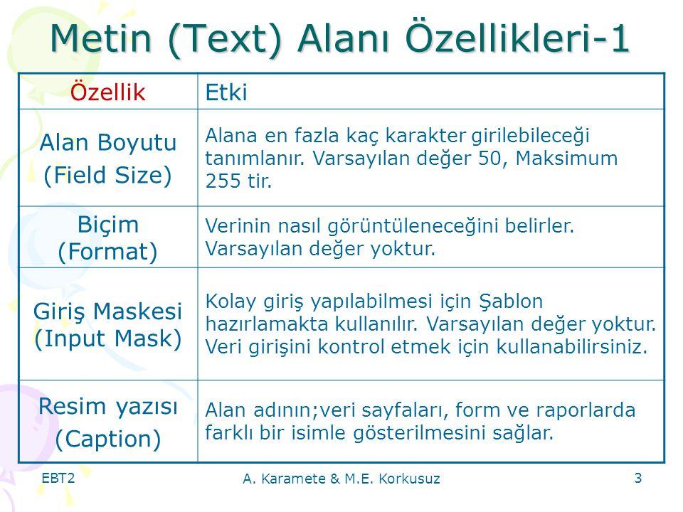 Metin (Text) Alanı Özellikleri-1