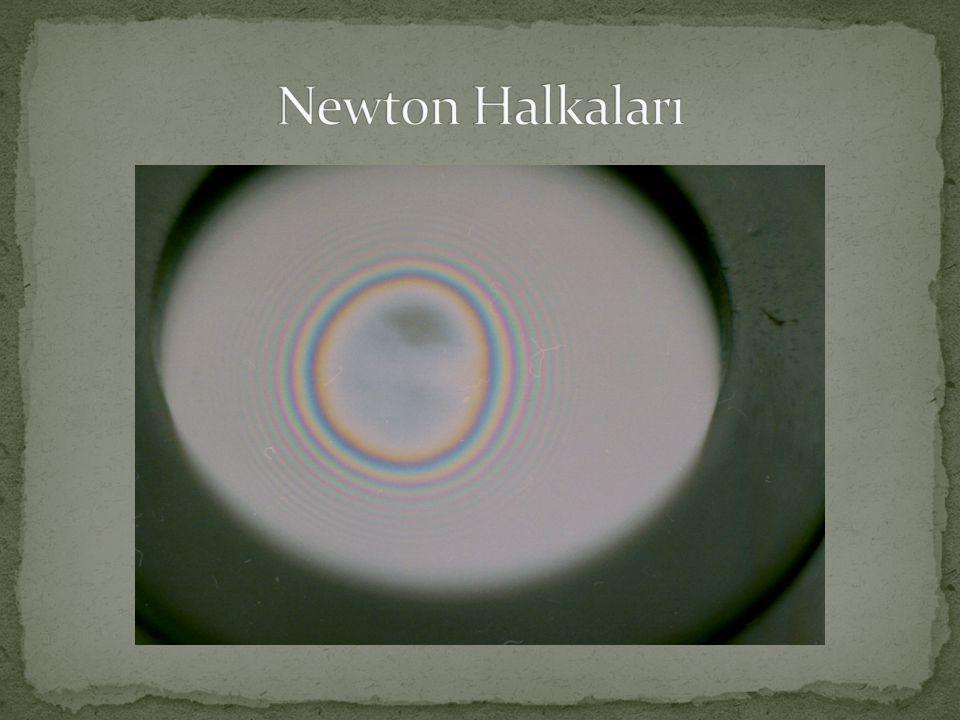 Newton Halkaları