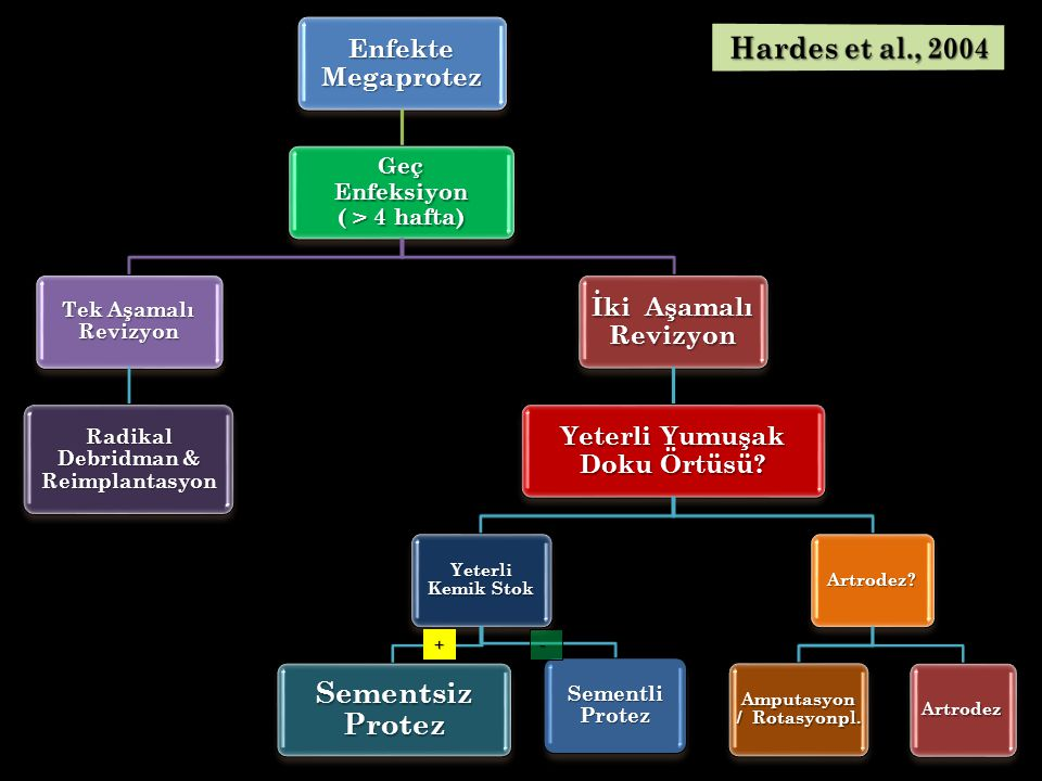 Sementsiz Protez Hardes et al., 2004