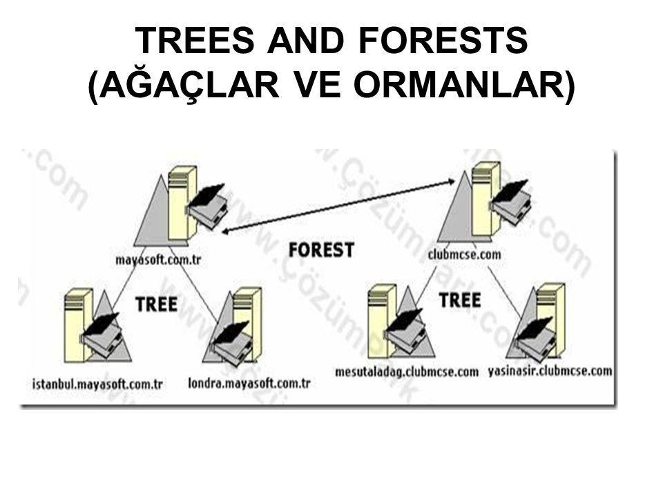 TREES AND FORESTS (AĞAÇLAR VE ORMANLAR)