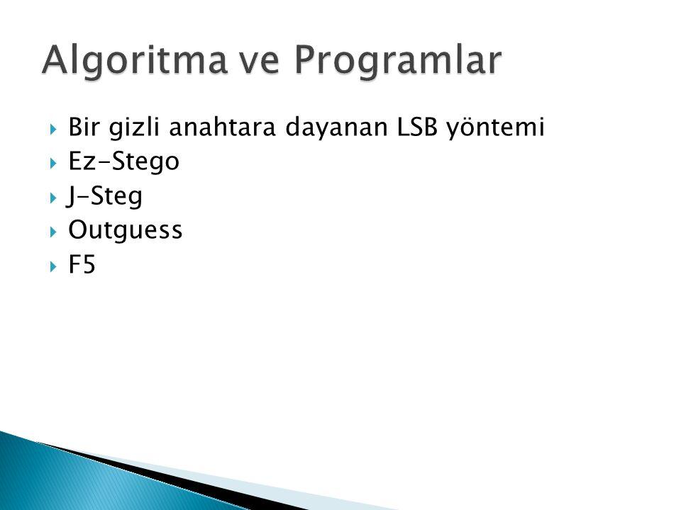 Algoritma ve Programlar