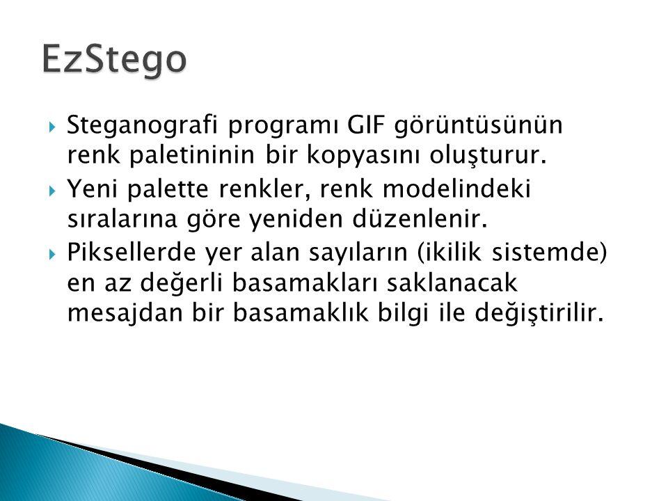 EzStego Steganografi programı GIF görüntüsünün renk paletininin bir kopyasını oluşturur.