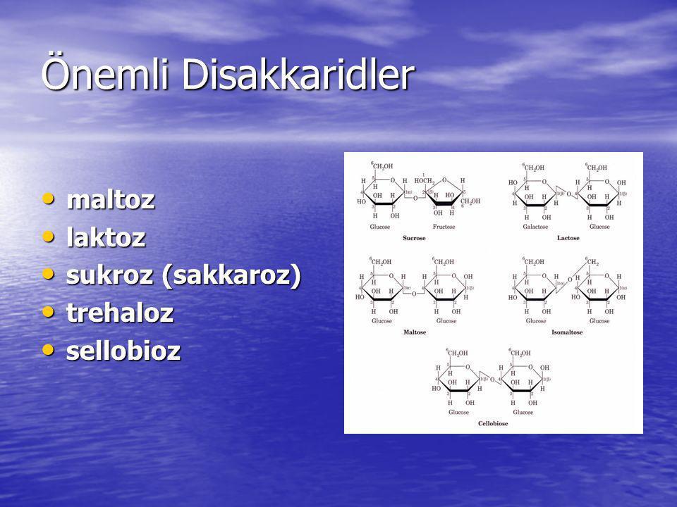Önemli Disakkaridler maltoz laktoz sukroz (sakkaroz) trehaloz