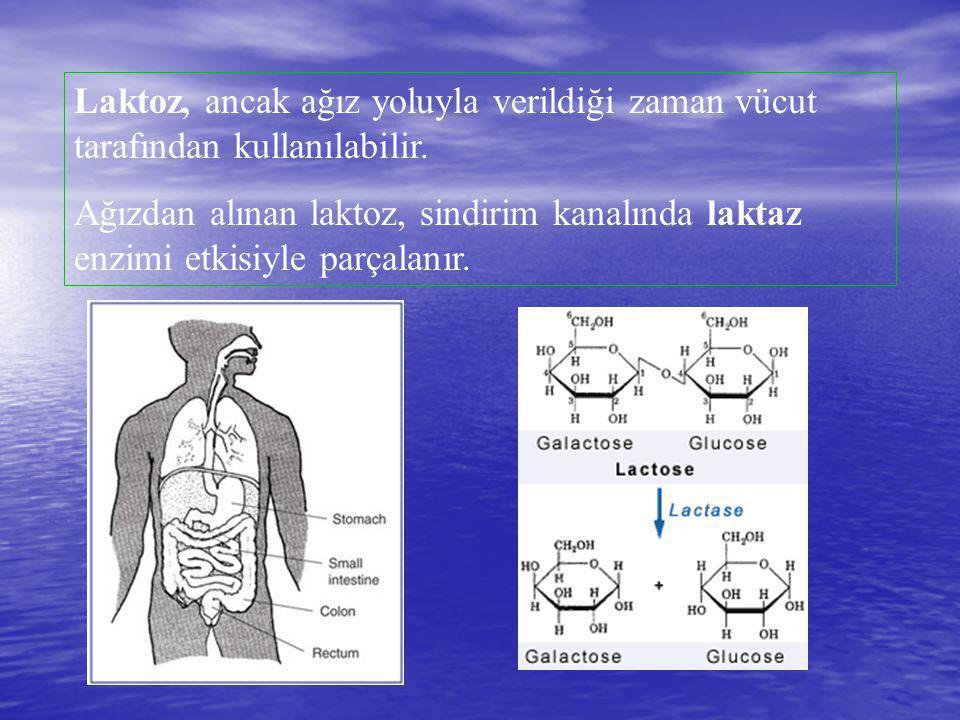 Laktoz, ancak ağız yoluyla verildiği zaman vücut tarafından kullanılabilir.