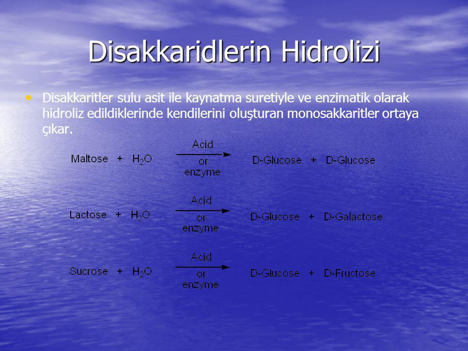Disakkaridlerin Hidrolizi