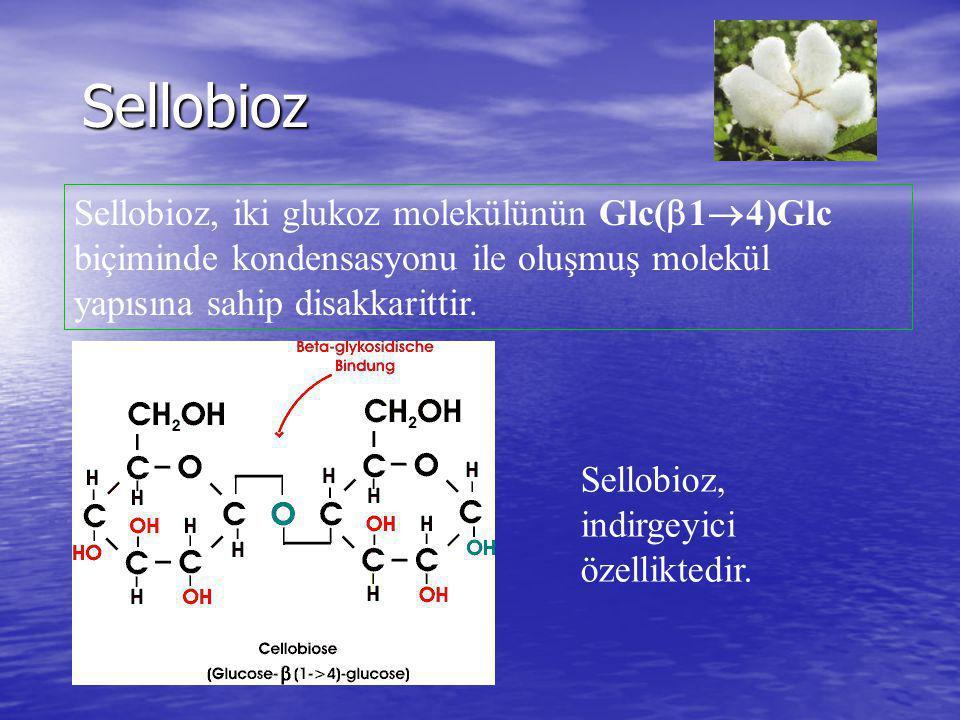 Sellobioz Sellobioz, iki glukoz molekülünün Glc(14)Glc biçiminde kondensasyonu ile oluşmuş molekül yapısına sahip disakkarittir.