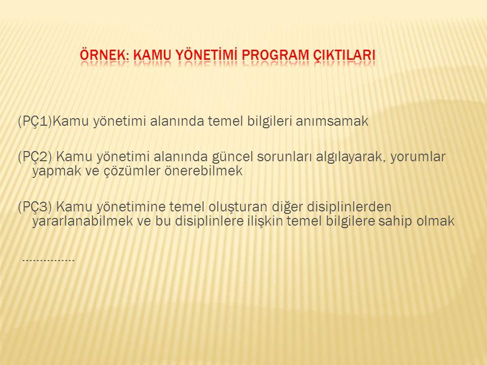 Örnek: Kamu Yönetİmİ Program ÇIktIlarI